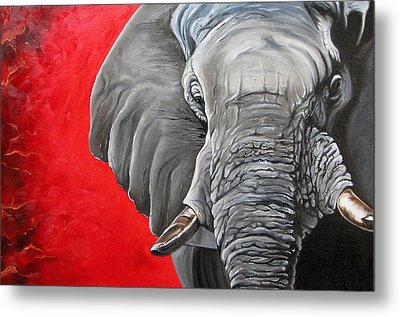 Elephant Metal Print by Ilse Kleyn