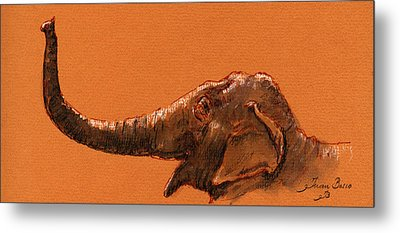 Elephant Indian Metal Print by Juan  Bosco