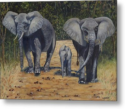 Elephants With Calf Metal Print by Caroline Street