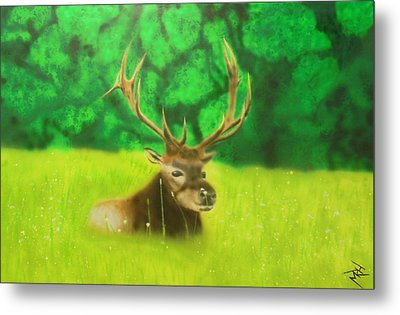 Elk In The Distance Metal Print by Michael Hall