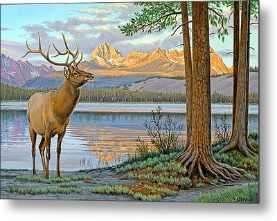 Elk In The Sawtooths Metal Print by Paul Krapf