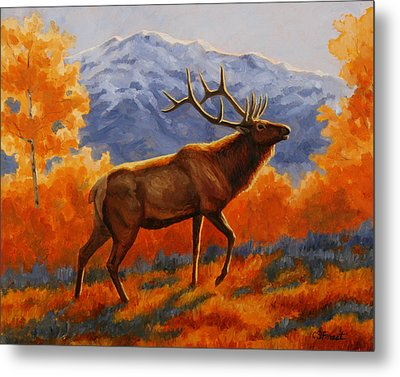 Elk Painting - Autumn Glow Metal Print by Crista Forest