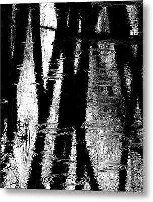 Emotional Crossing - Natures Tear Drops Metal Print by Steven Milner