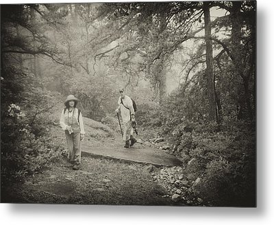 Enchanted Forest Metal Print by Jim Cook