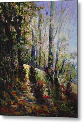 Enchanted Forest Metal Print by Sher Nasser