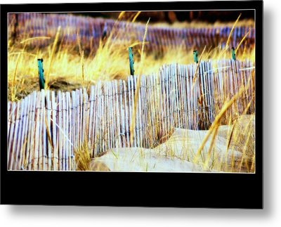 Enclosed Sand Dune Metal Print by Rosemarie E Seppala