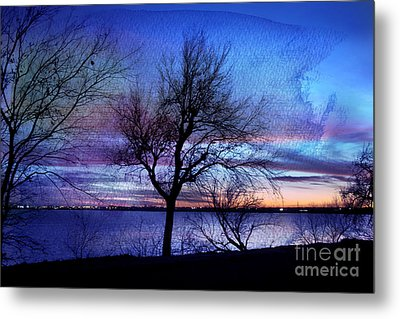 End Of Day Metal Print by Betty LaRue