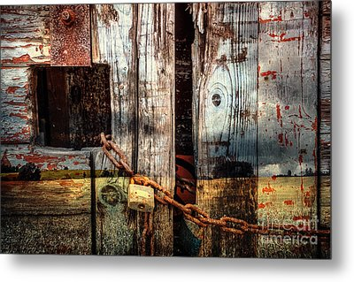 End Of Season Metal Print by Martin Dzurjanik