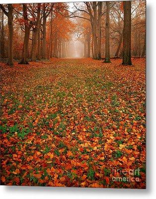 Endless Autumn Metal Print by Jacky Gerritsen