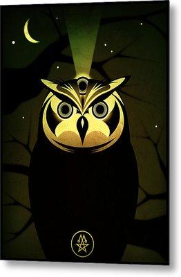 Enlightened Owl Metal Print by Milton Thompson