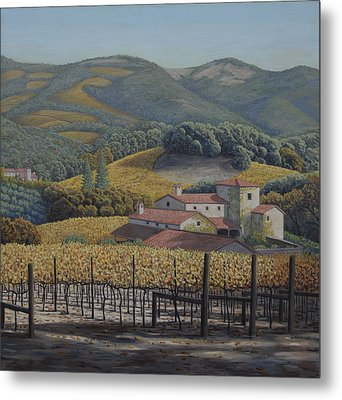 Estate Vineyards Metal Print by James English Babcock