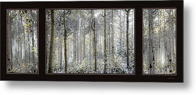 Etheral Forest Triptych Metal Print by Leland D Howard