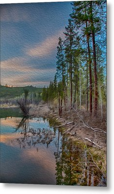 Evening On The Banks Of A Beaver Pond Metal Print by Omaste Witkowski