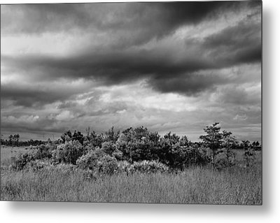 Everglades Storm Bw Metal Print by Rudy Umans