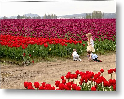Exploring The Tulip Fields Metal Print by Jennifer Wheatley Wolf