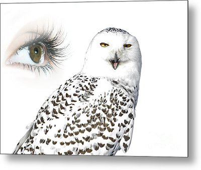 Eye Of Purity And The Mysterious Snowy Owl  Metal Print by Inspired Nature Photography Fine Art Photography
