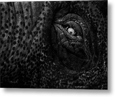 Eye Of The Elephant Metal Print by Bob Orsillo