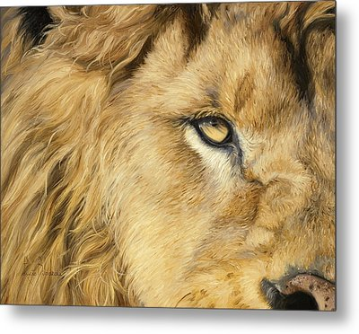 Eye Of The Lion Metal Print by Lucie Bilodeau