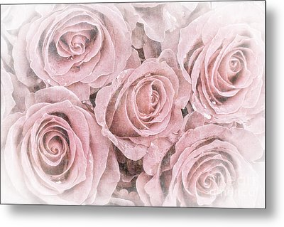 Faded Roses Metal Print by Jane Rix
