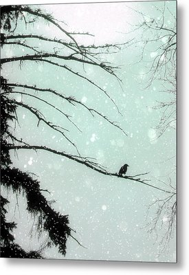 Faded Winter Sun Metal Print by Gothicolors Donna