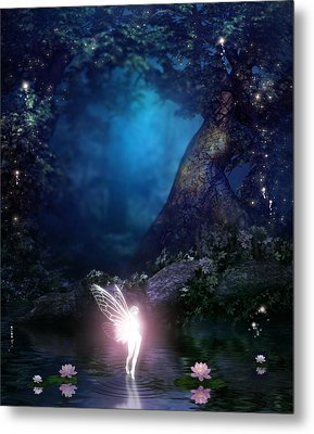 Fairie Metal Print by David Griffith