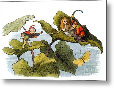Fairy Courtship Cut Short Metal Print by Photo Researchers