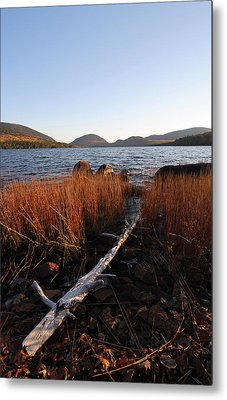 Fall Colors At Eagle Lake In Maine Metal Print by Juergen Roth