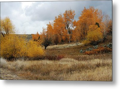 Fall In Montana Metal Print by Larry Stolle