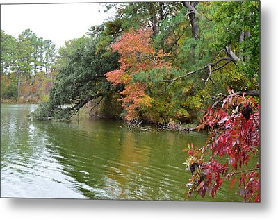 Fall Landscape Around The Lake 2 Metal Print by Lanjee Chee