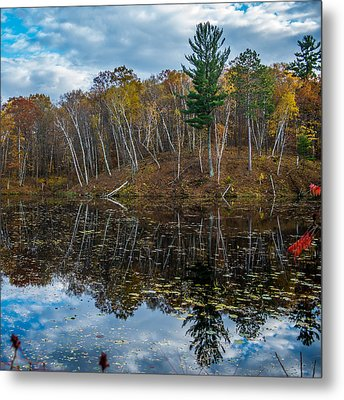 Fall Reflections Metal Print by Paul Freidlund