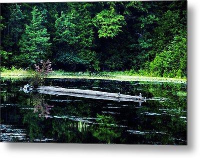 Fallen Log In A Lake Metal Print by Bill Cannon