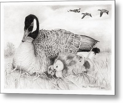 Family Metal Print by Paul Treadway