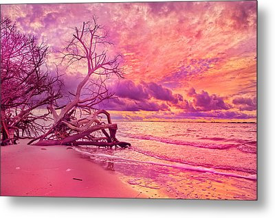 Farewell To The Day Metal Print by Betsy C Knapp