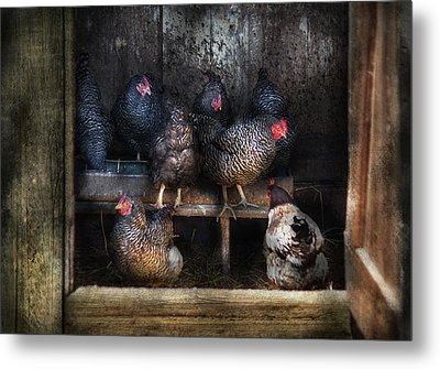 Farm - Chicken - The Hen House Metal Print by Mike Savad