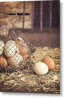 Farm Fresh Eggs Metal Print by Edward Fielding