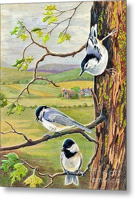 Feathered Friends Metal Print by Marilyn Smith