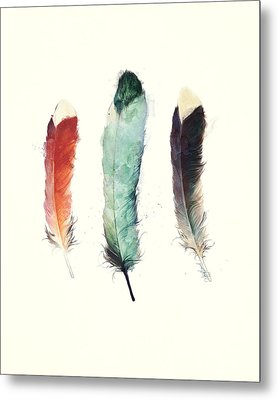 Feathers Metal Print by Amy Hamilton