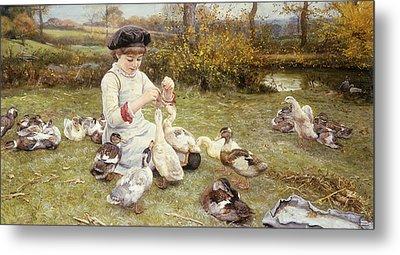 Feeding Ducks Metal Print by Edward Killingworth Johnson