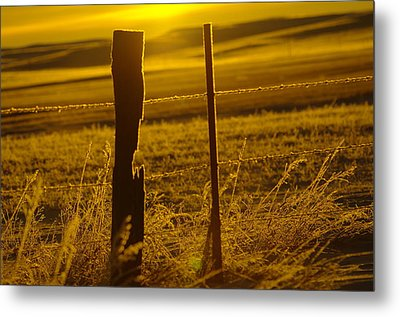 Fence Post In The Morning Light Metal Print by Jeff Swan