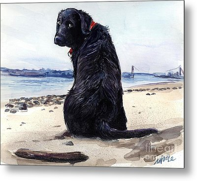 Fetching Metal Print by Molly Poole