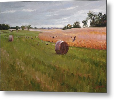 Field Day Metal Print by Scott Harding
