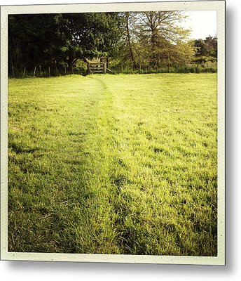 Field Metal Print by Les Cunliffe