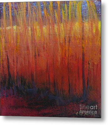 Field Of Dreams Metal Print by Melody Cleary