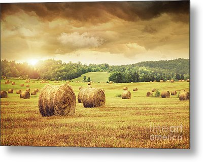 Field Of Freshly Bales Of Hay With Beautiful Sunset Metal Print by Sandra Cunningham