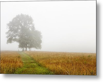 Fields In The Fog Metal Print by Andrew Soundarajan