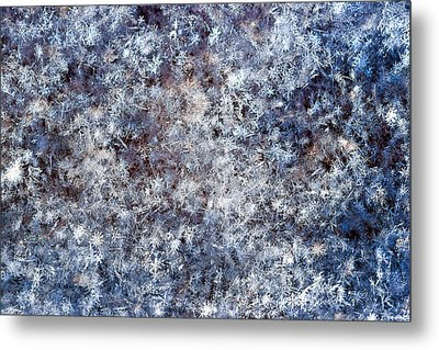Fifty Shades Of White Metal Print by Alexander Senin
