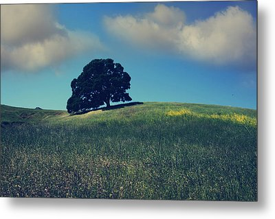 Find It In The Simple Things Metal Print by Laurie Search