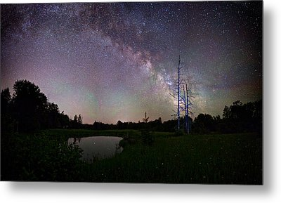Fireflies Under The Stars Metal Print by Brent L Ander