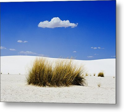 First Contact Metal Print by Skip Hunt