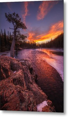 First Light Metal Print by Darren  White